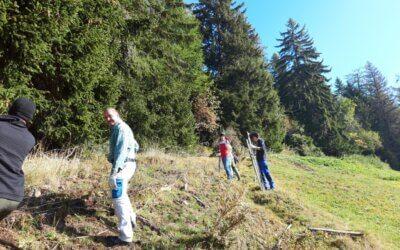 47 Migros-Lehrlinge im Natureinsatz in Albinen