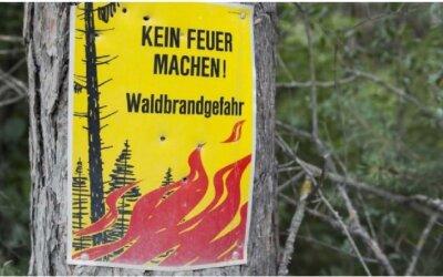 1. August: Aufruf zur Vorsicht – erhebliche lokale Waldbrandgefahr