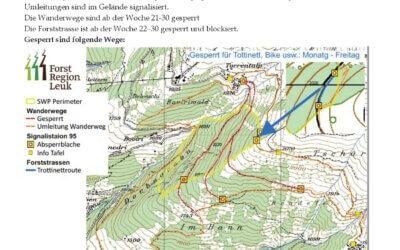 Schutzwaldpflege Dorbugraben: So ist aktuell der Stand der Arbeiten