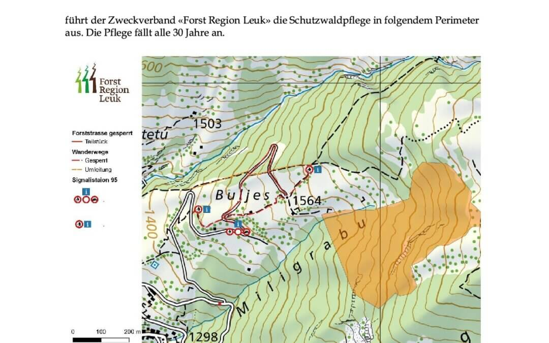 Forst- und Wanderwege gesperrt wegen Heli-Holztransporten im Miligrabu