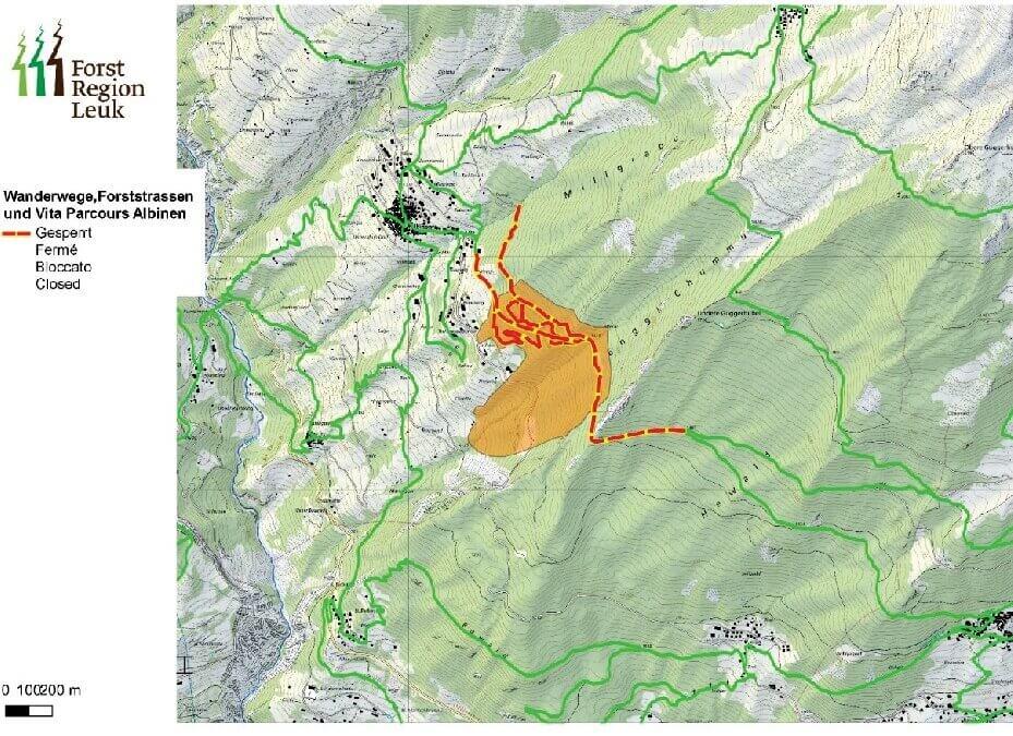 Schutzwaldpflege im «Tschäss»-Wald bedingt Weg-Sperren